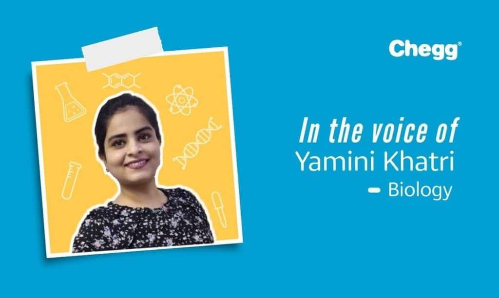 Yamini khatri